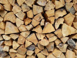 druhy palivového dřeva