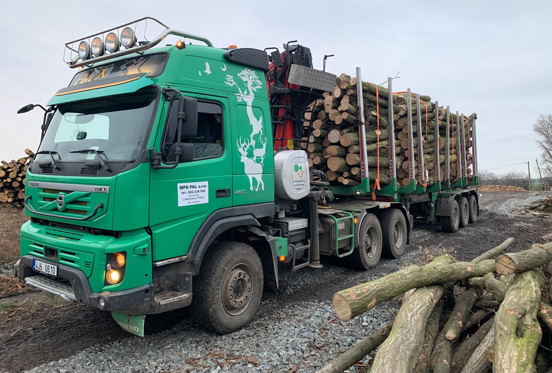 kamionová doprava dřeva - naložený kamion dřevem