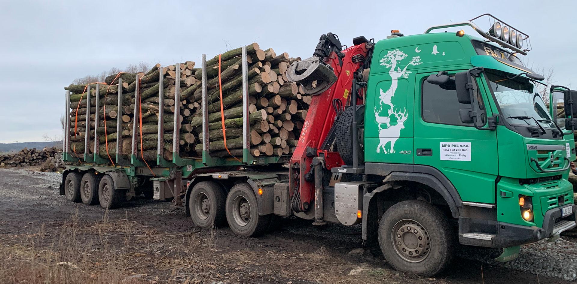 kamion naložený dřevem